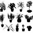 Silhouette of different potted plants vector — Stock Vector