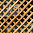 Wooden trellised fence from a pine — Stock Photo