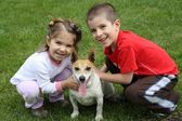Cute kids with dog — Stock Photo