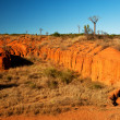 Desert of Madagascar - Stock Photo