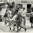 Two Ethiopian men follow the donkey — Stock Photo
