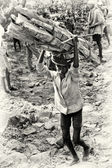 An Ethiopian young man with a bunch of wood on his shoulders — 图库照片