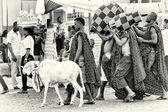 Du ghana avec l'eau, des chèvres, des bocaux — Photo