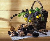 Wild mushrooms in a basket — Stock Photo