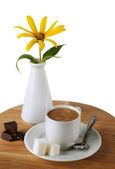 Coffee cup and Chocolate ,sugar and flower — Stock Photo