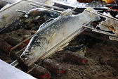 Grilled fish with salt — ストック写真
