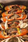 Granchi di mare al mercato del pesce — Foto Stock
