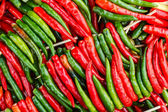 Brightly colored peppers — Stock Photo