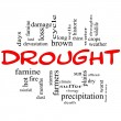 Drought Word Cloud Concept in Red and Black — Stock Photo