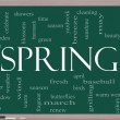 Stock Photo: Spring Word Cloud Concept on Blackboard