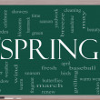 Spring Word Cloud Concept on a Blackboard — Stock Photo