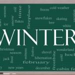 Winter Word Cloud Concept on a Blackboard — Stock Photo #11738254