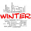Winter Word Cloud Concept in Red Caps — Stock Photo #11738255