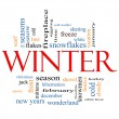 Winter Word Cloud Concept — 图库照片