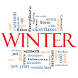 Winter Word Cloud Concept — Stock Photo
