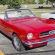 Постер, плакат: Red Ford Mustang Convertible