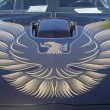 Stock Photo: 1980 Pontiac Firebird Trans Am Hood