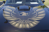 1980 Pontiac Firebird Trans Am Hood — Stock Photo