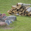 Wood by the Campfire — Stock Photo