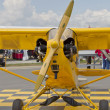 Постер, плакат: Piper Yellow Cub Airplane Front View
