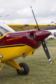 Maroon & Yellow Aviat Aircraft Husky A-1C Front View — Foto de Stock