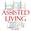 Постер, плакат: Assisted Living Concept