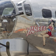Stock Photo: Yankee Lady Close Up
