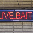 Live Bait — Stock Photo