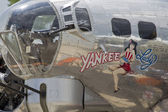 Yankee Lady Close Up — Stock Photo