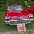 Stock Photo: 1960 Ford Thunderbird Front View