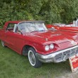 Постер, плакат: 1960 Ford Thunderbird Side View