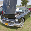 1957 Ford Thunderbird Front View — Stock fotografie #12402662