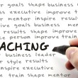 Stock Photo: Hand Writing Coaching Concept