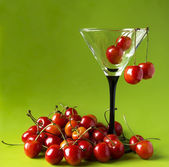 Sweet cherries in a martini-glass. — Stock Photo
