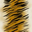 Royalty-Free Stock Photo: Tiger skin background
