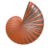 Beach shell — Stockfoto