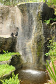 Two chimps by a waterfall — Stock Photo