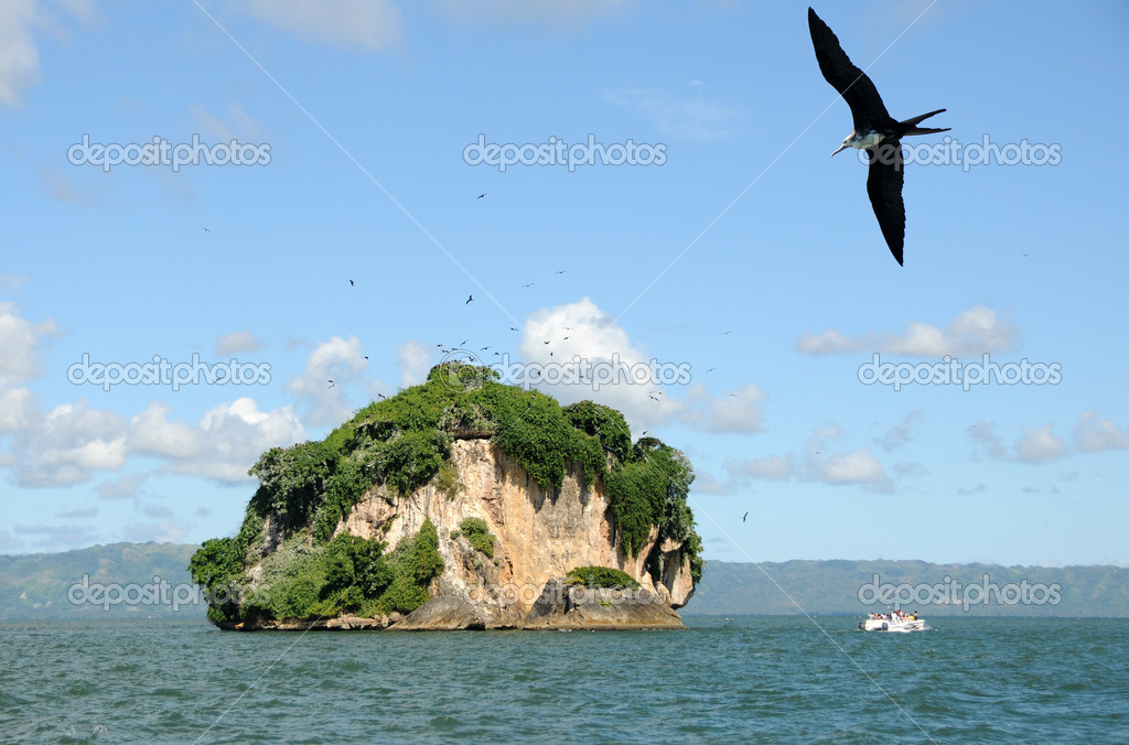 Birds and bird watchers on a remote Caribbean island — Stock Photo #11795982
