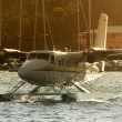 Seaplane approaching — Stock Photo