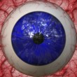 Eyeball closeup — Stock Photo #11862928
