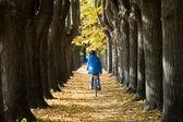 Sonbaharda bisiklete binme. — Stok fotoğraf