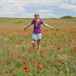 Foto Stock: Poppy field