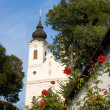 Stock Photo: Thiany abbey with roses in front