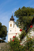 Thiany abbey with roses in front — Stock Photo