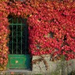 Autumnal entrance - Stock Photo