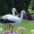 Stock Photo: Storks decor