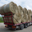 Bundles of hay on the lorry — Stock Photo