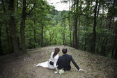 Newly married couple in the forest — Stock Photo