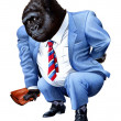 A gorilla tired from business — Stock Photo #11918614