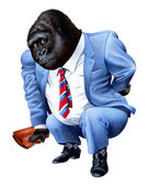 A gorilla tired from business — Stock Photo